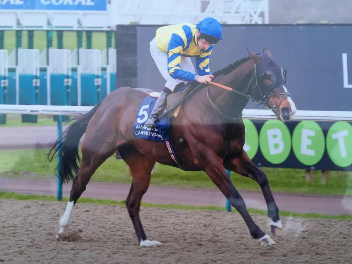 Karnage Winning at Lingfield
