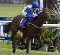 Distinctive won a Group 3 as a two year old a went to be fifth in the 1000 Guineas