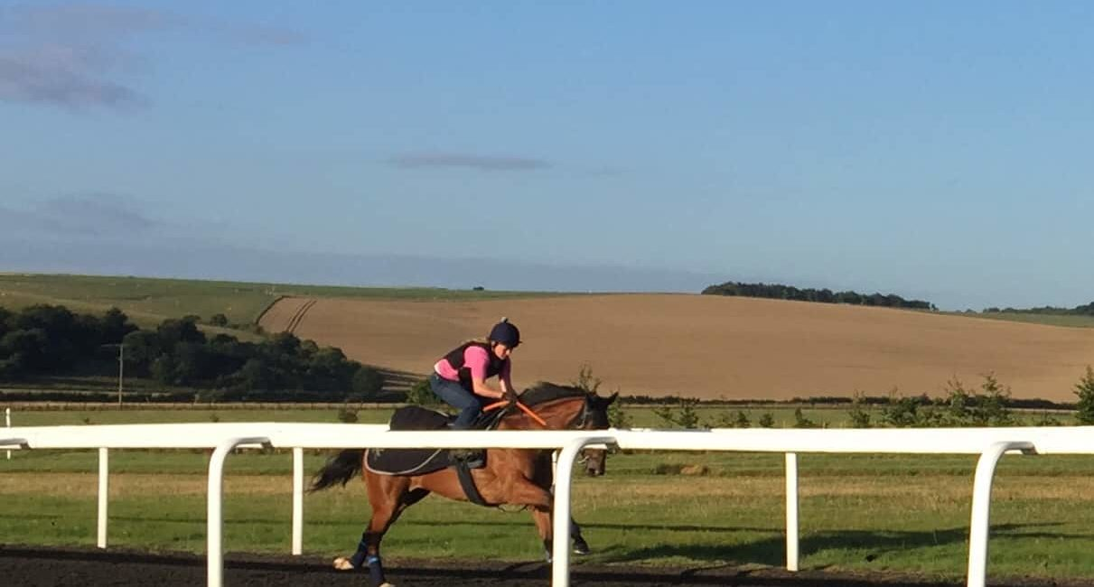 Thoughts on Mandria at Kempton today
